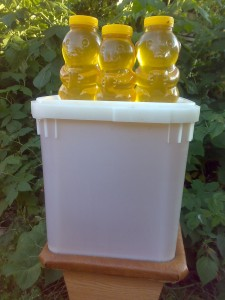 Алтайский мёд почтой