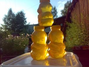 алтайский мёд купить
