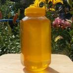 Горный мёд, августовской качки