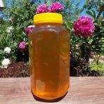Раннелетний, горный мёд