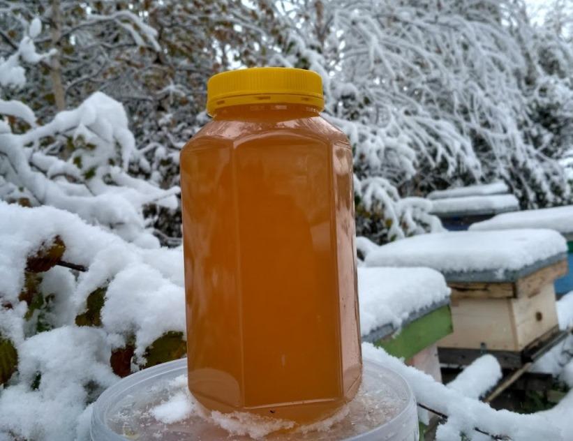 Алтайский мёд, Чарышский мёд, Горный мёд